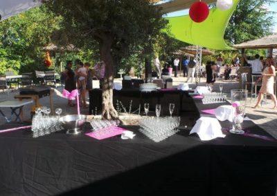 Organisation de mariage a St Vulbas - reception 1