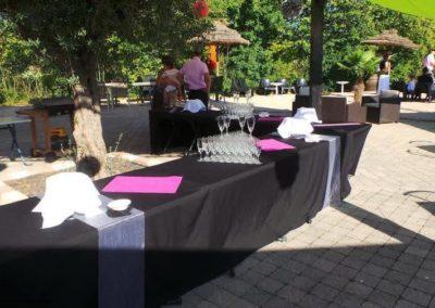 Organisation de mariage a St Vulbas - reception 2