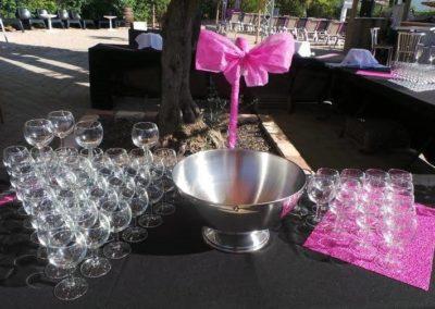 Organisation de mariage a St Vulbas - reception 3
