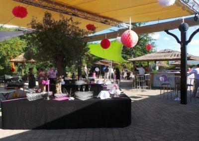 Organisation de mariage a St Vulbas - reception